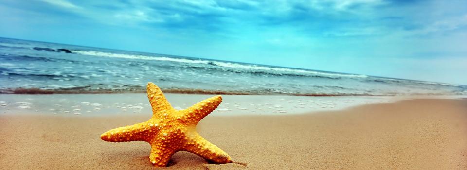 Goa-Beach-2