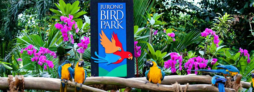 Singapore-Bird-Park