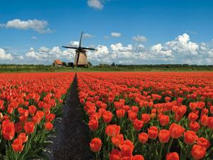 Wonderfull Europe