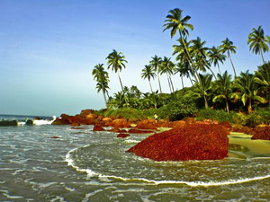 Konkan-Beach